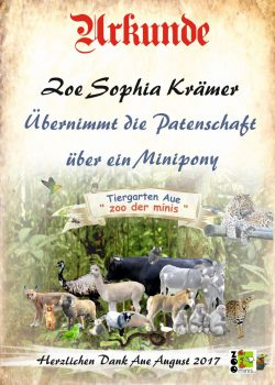 17 08 16 Zoe Sophia Krämer Minipony