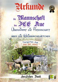 17 10 06 VIP FCE Mannschaft Weissbueschelaeffchen
