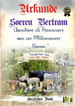 18-05-26-Sören-Bertram-Urkundekl