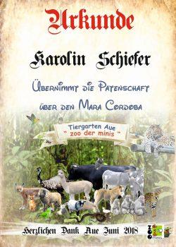 18-06-05-Karolin-Schiefer-Mara-Cordoba-kl
