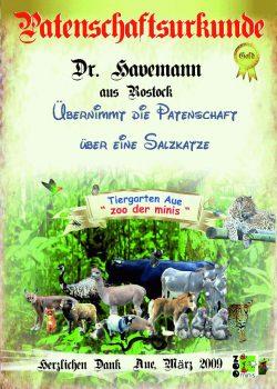 Gold 01 Dr Havemann Salzkatze