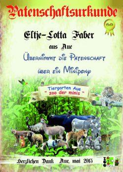Gold 11 Eltje Lotta Faber minipony