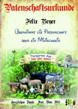 Pate 06 Felix Beyer Minischwein