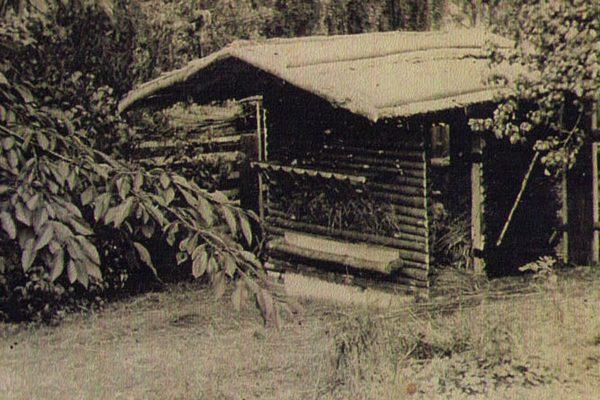 Rehaus im Tierpark Aue 1960