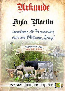 18 08 03 Ayla Martin Minipony
