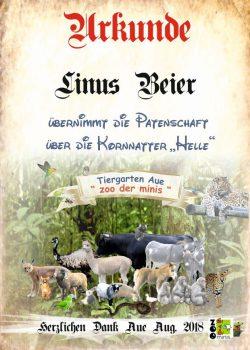 18 08 03 Linus Beier Konnatter